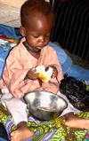Vign_michel_s.pelletier_tchad_2006-nutritionabeche7
