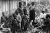 Vign_michelsimonpelletierrwanda93-15